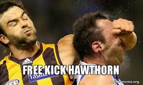 Make Meme Free - free kick hawthorn make a meme
