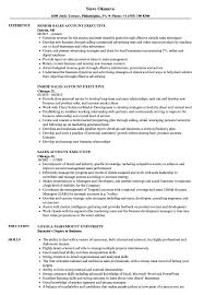 resume templates account executive position at yelp business account sales account executive resume sles velvet jobs
