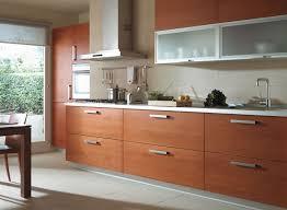 photo de cuisine amenagee superbe image de cuisine amenagee 5 michigan la cuisine en bois