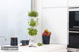 fresh indoor kitchen gardening with green color styles u2013 new
