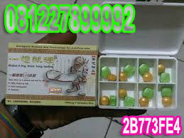 agen klg asli gorontalo 0858 4244 4497 klg asli