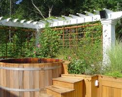 Landscaping Ideas For Backyard Privacy Privacy Landscaping Ideas Houzz
