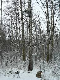 choosing and using tree stands and blinds big hunt