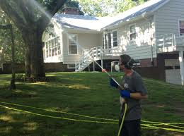 How To Get Rid Of Mosquitoes In Backyard by Getting Rid Of Mosquitoes The Green Way
