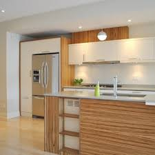 custom kitchen cabinet doors ottawa thermoplastic cabinets houzz