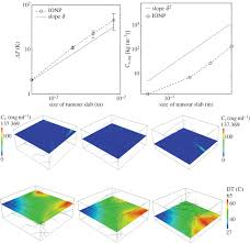 modelling mass and heat transfer in nano based cancer hyperthermia