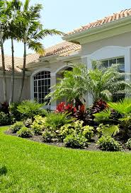 Landscape Ideas For Backyard by 106 Best Front Yard Florida Images On Pinterest Landscaping