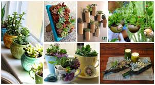 Decorate Your Home 15 Simple But Creative Diy Ideas To Grow Plants And Decorate Your