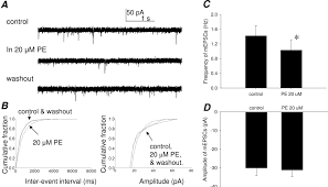 modulation of synaptic transmission to second order peripheral