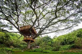 three house explore three treehouses the treehouse guys diy