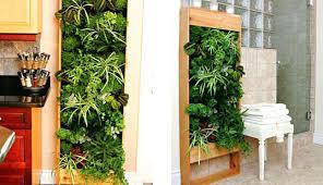 best indoor vertical gardens ideas on wall living designs garden