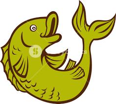 cartoon fish jumping side royalty free stock image storyblocks