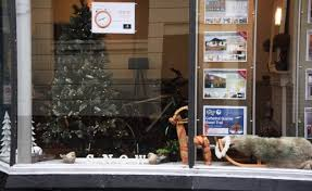 Christmas Decorations For Window Displays by Christmas Is Long Over But One Norwich Estate Agent Still Boasts A