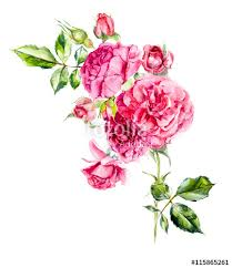painting greeting cards in watercolor rosebush pattern from pink wedding drawings watercolor