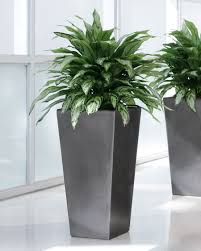 shop silver artificial plant at petals
