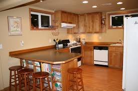 Ideas For Unfinished Basement Kitchen Contemporary Unfinished Basement Basement Design