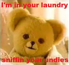Snuggle Bear Meme - snuggle bear creepy info