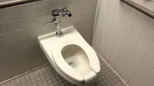 kohler archer toilet toilet tissue holder walmart in assorted