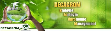 bureau d etude environnement présentation bureau d étude environnement tourisme agriculture