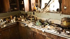 Whats The Germiest Place In Your Kitchen ABC News - Dirty kitchen sink