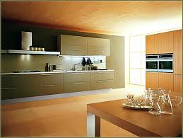 wiring under cabinet lighting interior under cabinet lighting led gammaphibetaocu com