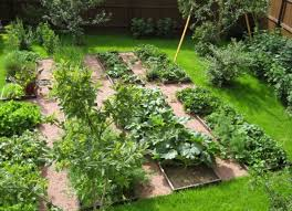 potager vegetable garden style the best time to plant in your