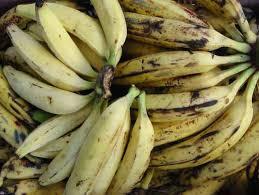 comment cuisiner les bananes plantain banane plantain fruits et légumes exotiques