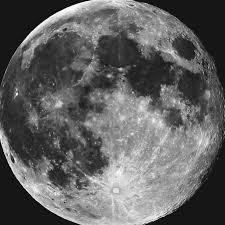 pale white moon home