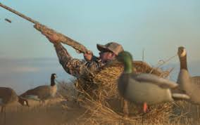 Scentite Blinds Hunting Blinds U0027s Sporting Goods