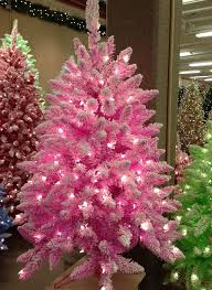 small pink tree with lights rainforest islands ferry