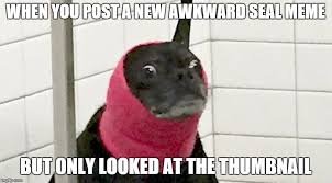 Awkward Seal Meme Generator - pretty sure we ve all done this at some point imgflip