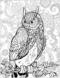 coloring pages for adults tree tree coloring pages just color coloring pages for adults