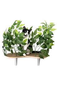 Winners Home Decor Cat Themed Home Décor Cat Toss Pillow Cat Tissues Dispenser