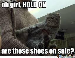 Sassy Cat Meme - sassy cat is sassy by verterlex meme center