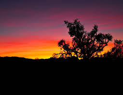 Fires At Night Forget Gravity Lyrics by Doug U0027s Rants Archives Santa Clarita Gazette And Free Classifieds