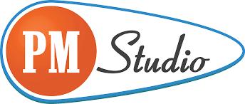 pmi pmbok guide 6th edition pm studio