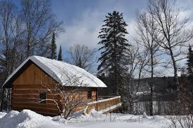 independent eco cabins wolf den hostel and nature retreat