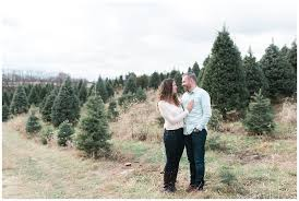 lori u0026 kevin perfect christmas tree farm engagement session