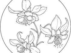Easter Flower Coloring Pages - flower page printable coloring sheets summer coloring kids