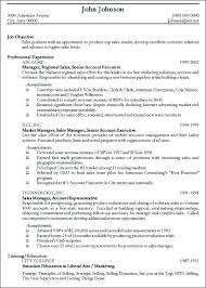 Resume Example For It Professional by Resume Example Of It Professional Augustais