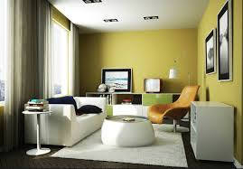 nerolac paints colour combinations for living room home combo
