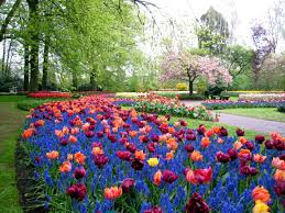 colorful keukenhof gardens u2013 holland world for travel