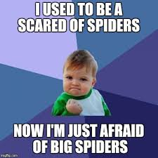 Afraid Of Spiders Meme - i used to be a scared of spiders now i m just afraid of big spiders