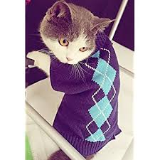 cat sweater amazon com striped cats sweater aran pullover knitted clothes