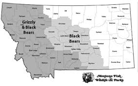 Bears Montana Hunting And Fishing - montana outdoors some thoughts on hunting in bear country