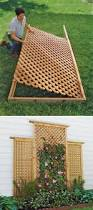 best 25 wood trellis ideas on pinterest fenced in backyard