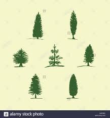 set of hand drawn sketch trees pine fir tree cypress stock