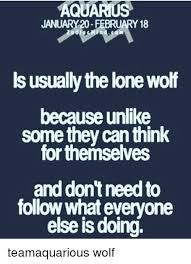 Lone Wolf Meme - aquarius january 20 february 18 ls usually the lone wolf because