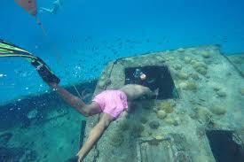 jeep snorkel underwater snorkeling in barbados island routes