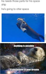 Otter Memes - otters memes best collection of funny otters pictures